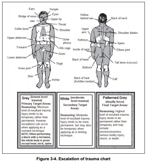 Army's 'Lethal Force' Body Chart